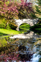 Spring Reflections - Dow Gardens