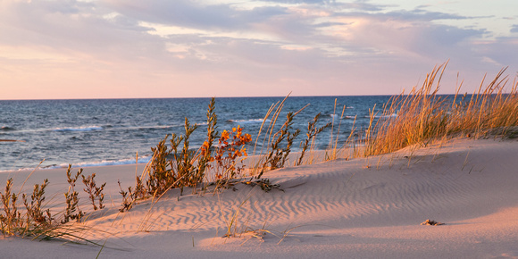 LD-1052 - Ludington Dune Grass with Sunset Glow