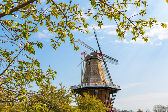 Spring at Windmill Island - Holland Michigan
