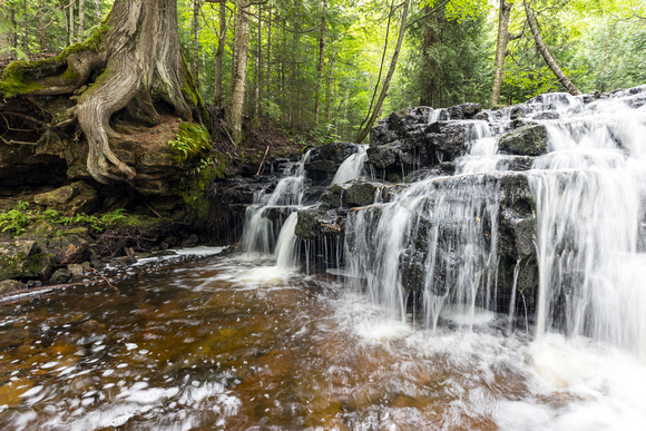 Mosquito Falls and Old Tree - Pictured Rocks